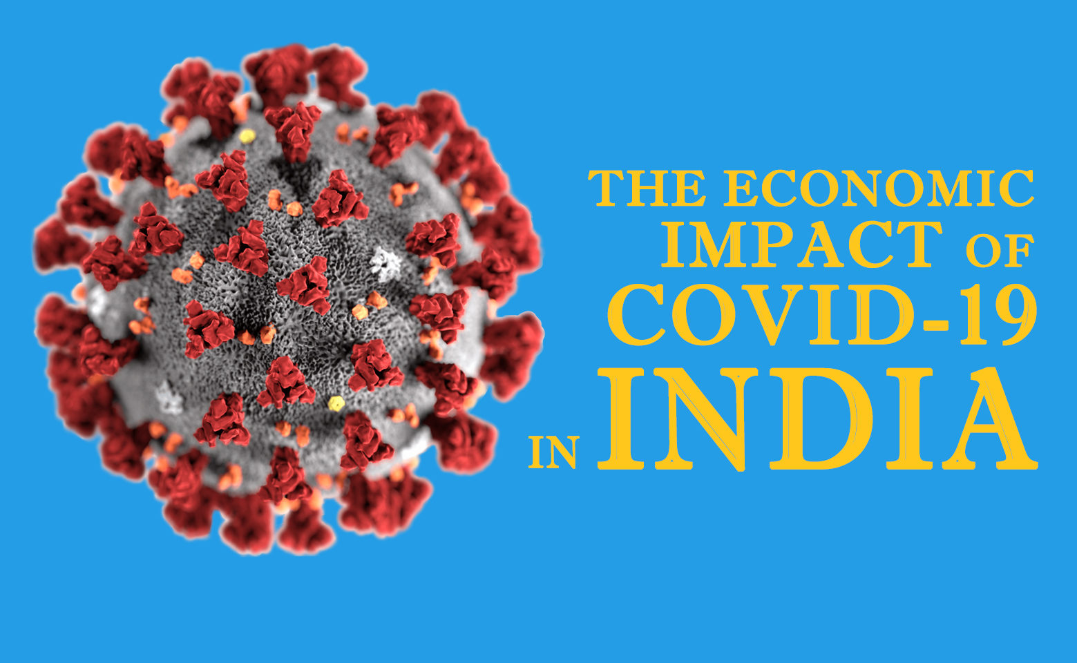 Economic Impact of COVID-19 in India